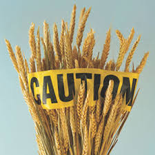 stalks of wheat with yellow caution tape around it