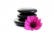 Smooth stones stacked with pink flower