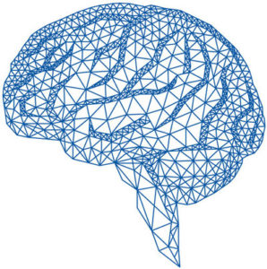 Drawing in blue of Brain Architecture for Functional Neurology